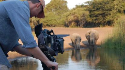 Hunter and Hunted: Rhino Showdown